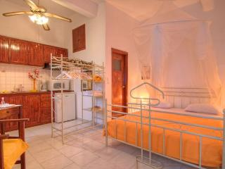 Romantic 1 bedroom Condo in Drosia - Drosia vacation rentals