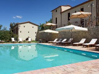 Villa Ilaria - Palaia vacation rentals