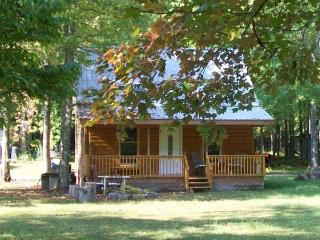 Little Easy Cabins-Classic Log House Near Tn River - Holladay vacation rentals