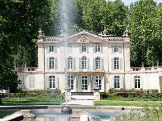 Ideal for a Wedding or Corporate Retreat! Historic Estate Chateau Ventoux with Private Chef & Pool - Terres Basses vacation rentals