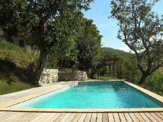 Glorious Villa Beatrice offers a fireplace, swimming pool and alfresco dining - Todi vacation rentals