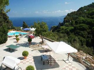 Villa Colonnina - Modern villa with large terraces, beautiful gardens & pool - Capri vacation rentals