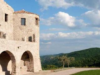 Sublime Castello Sant'Eurasia with fireplaces in each room, pool & housekeeping - Assisi vacation rentals