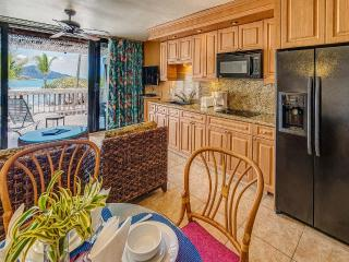 Comfortable Condo with Deck and Internet Access - East End vacation rentals