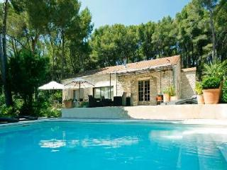 Secluded Family-Friendly Countryside Retreat Villa Cecile Set in Lovely Garden with Pool - Carpentras vacation rentals