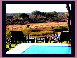 Hippo Hills - Kruger National Park Boundary - Kruger National Park vacation rentals