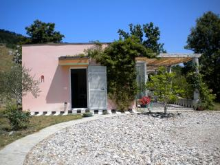 Casa Colorata near the Cinque Terre - Borgo val di Taro vacation rentals