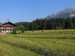 Nice 7 bedroom Bed and Breakfast in Ellmau - Ellmau vacation rentals