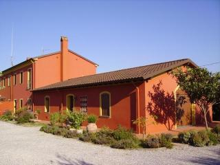 Red Country House, hills of Lucca, Montecarlo - Montecarlo vacation rentals