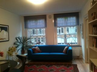 Beautiful,Sunny Apt in Oud West(bordering Jordaan) - Amsterdam vacation rentals