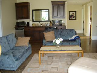 Perfect Condo with Internet Access and A/C - Salmon Arm vacation rentals