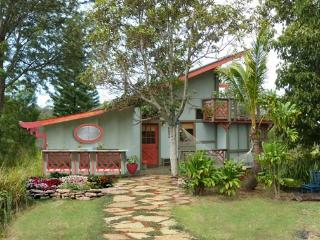 Sweet 2BR Ocean View Home Above Rainforest Canopy - Makawao vacation rentals