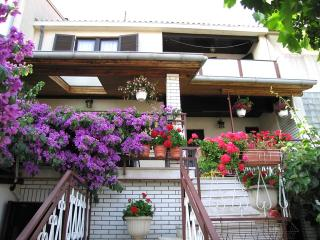 Apartment Irena - Stinjan vacation rentals