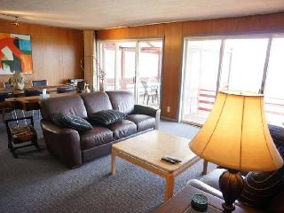 South Shore - New Buffalo vacation rentals