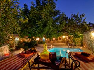Eleni's Stately Home, Privacy, Pool & Garden! - Agia Pelagia vacation rentals