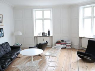 Lovely and large Copenhagen apartment at Vesterbro - Copenhagen vacation rentals
