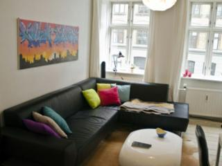 Cozy Copenhagen apartment at Frederiksberg - Copenhagen vacation rentals