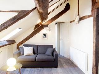 LUXURY ONE BEDROOM LE MARAIS / POMPIDOU 1 - Paris vacation rentals