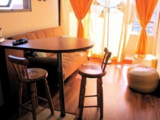 Departamento amoblado en Santiago centro - Santiago vacation rentals