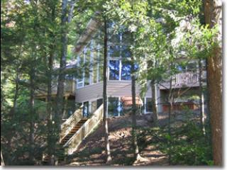 Beautiful Cottage with Deck and Satellite Or Cable TV - Arden vacation rentals