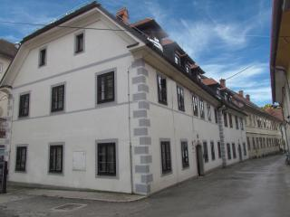 Apartments Old Town - little studio - Ljubljana vacation rentals