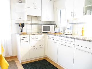 Lovely apartment in Zurich for 1-3 persons - Zurich vacation rentals