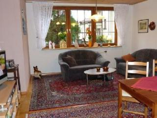 Vacation Apartment in Steinach (Baden-Wuerttemberg) - 646 sqft, bright, well-maintained, comfortable… - Oberharmersbach vacation rentals
