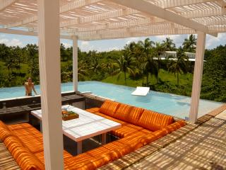 Luxury Villa For 10, Park 350,000m2 - Las Terrenas vacation rentals