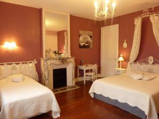 Charming Castle with Internet Access and Satellite Or Cable TV - Haybes vacation rentals