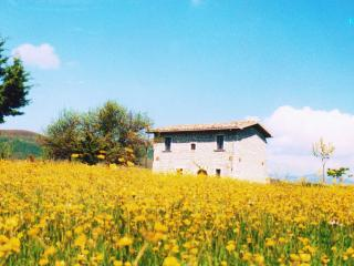 Beautiful 3 bedroom Villa in Forli del Sannio - Forli del Sannio vacation rentals