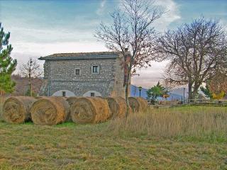 Beautiful Villa with Mountain Views and Patio - Forli del Sannio vacation rentals