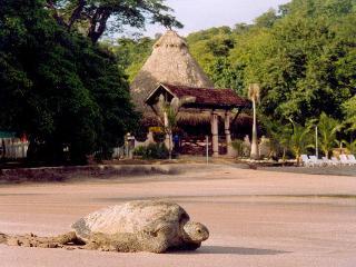 Villa at Bahia de los Piratas - Playas del Coco vacation rentals