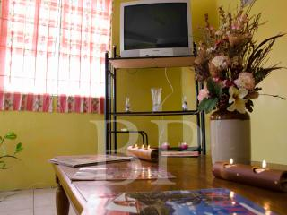 Aanola Villa - Saint Lucia vacation rentals