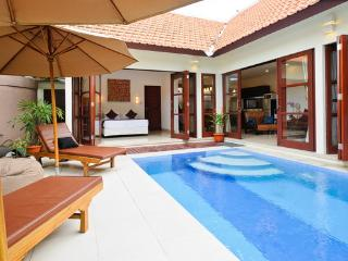LUXURY, CENTRAL, PRIVATE 2 BDRM, 100 MTRS TO BEACH - Ketewel vacation rentals