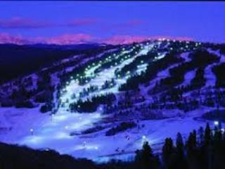 """Nestled Inn""our cozy Ski Mountain Getaway for 10 - Granby vacation rentals"