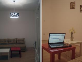 Newly renovated apartement - BELGRADE CENTER - Belgrade vacation rentals