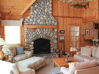 Rustic Feel with Contemporary Flare - Lake Leelanau vacation rentals
