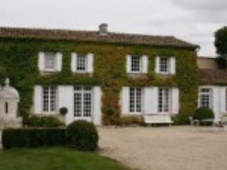 Historic and very private estate with pool - Jarnac vacation rentals