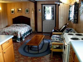 Cozy Cabin in Ashford with Cleaning Service, sleeps 4 - Ashford vacation rentals