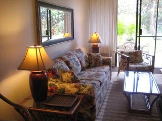 Maui Vista.SPECIAL:  Mar 15 thru Dec 14, ONLY $110 - Kihei vacation rentals