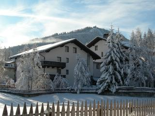 Sunny equipped suite in the heart of Dolomites ! - La Villa vacation rentals