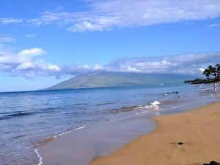 Hale Kamaole #135 South Shore, Completely Remodeled. - Kihei vacation rentals