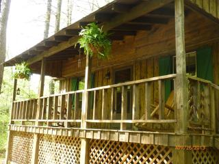 DRIFTWOOD *  Romantic, Riverside, Hot Tub Get Away - Ellijay vacation rentals
