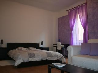 MIcasa 1 (P.ta Venezia), your short stays in Milan - Milan vacation rentals