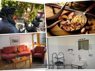Luxurious Lindensuite in Wildemann, Harz Mountains - Wildemann vacation rentals