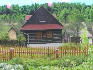 Delightful cottage with wildlife views - Bardejov vacation rentals