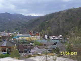 #201 Gatlinburg Chateau - 2 Bedroom Condo - Gatlinburg vacation rentals