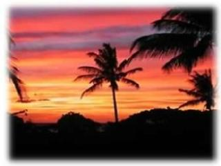 2 bedroom Apartment with Internet Access in Waikoloa - Waikoloa vacation rentals