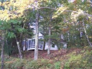 cottage # 5 - Tall Pines Cottages: One and Two bdr. cottages - Henniker - rentals