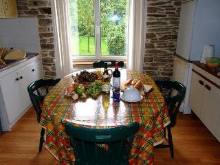 TirNaNog  Ideal Family Holiday Home - Spezet vacation rentals